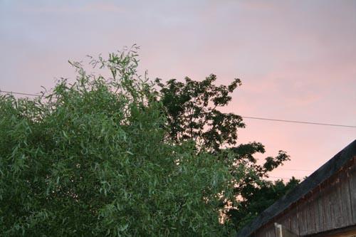 Abendrot über Gardenia