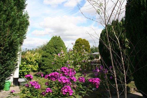 Im Suse-Garten